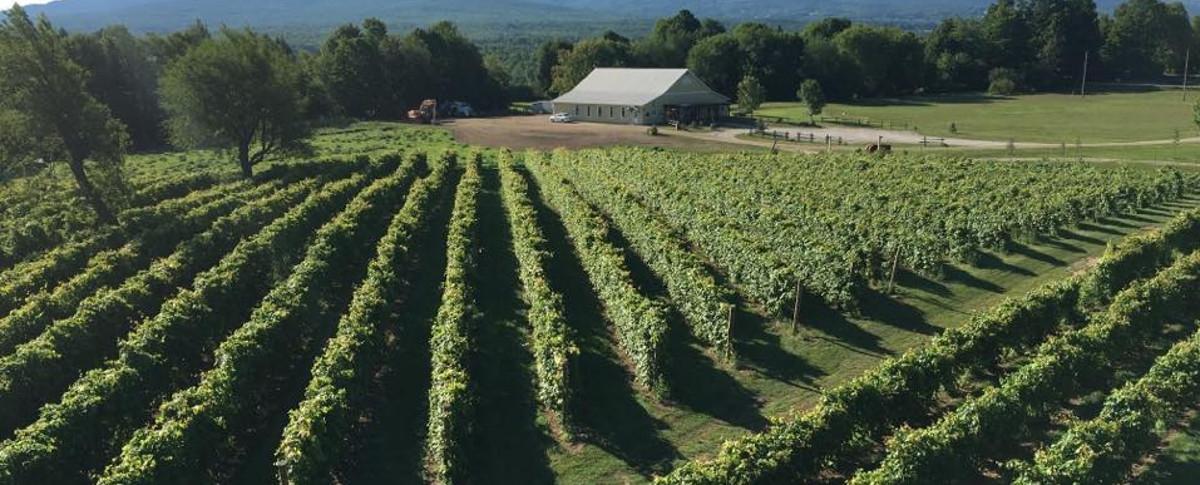 Vin Artisanal le Ricaneux