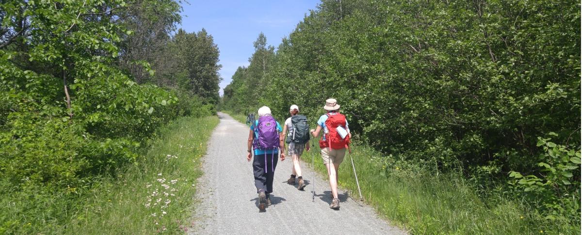 Québec Compostelle: Ca marche